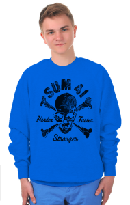 Свитшот  Sum 41 | Sum 41 Pieces Harder Faster Stronger black