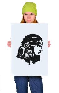 Постер Тэйм Импала Девушка   Tame Impala Girl