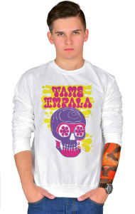 Свитшот Тэйм Импала Череп   Tame Impala Skull