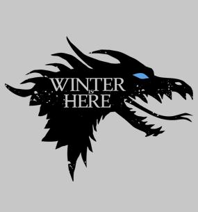 Заказать футболку winter is here